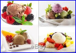 Commercial Hard Ice Cream Machine 20L/h Stainless Steel Ice Cream Maker 220V Y